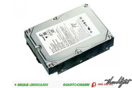 Ổ cứng camera HDD Seagate 250 GB SATA